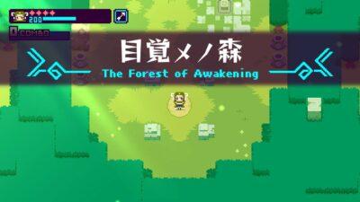 Ca ressemble à la forêt Kokiri !