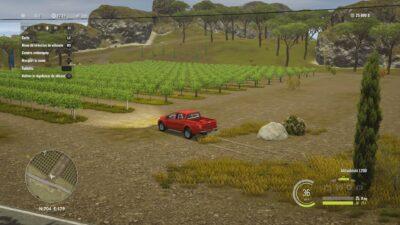 Mes champs de vignes en Italie :) !