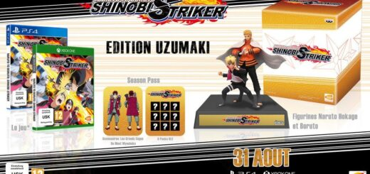 L'édition collector de Naruto to Boruto Shinobi Striker sur PS4 et Xbox One