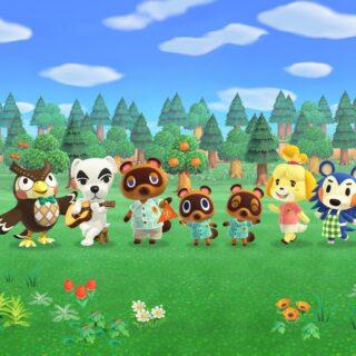 Animal Crossing New Horizons sur Nintendo Switch